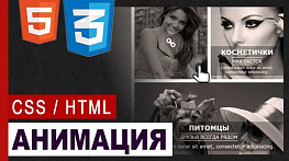 Тройная АНИМАЦИЯ на CSS | transform - transition